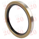 Oil Seal - Crankshaft Rear